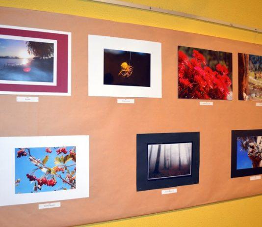 Concurs Fotografia Muntanya